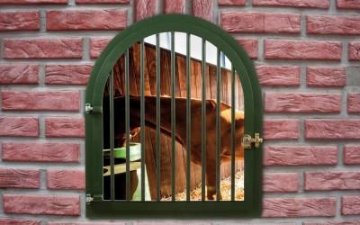 finestra 04